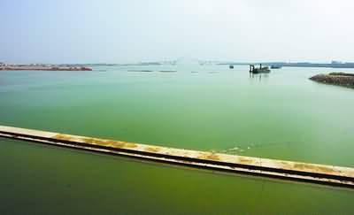 该景点初步设计为长条形沙滩,供游人在此休闲看海,近距离感受帆船在湾