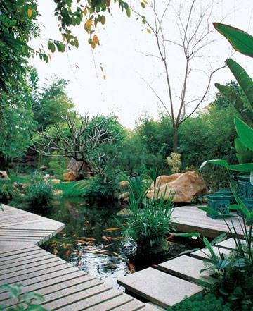 家庭院风景图片