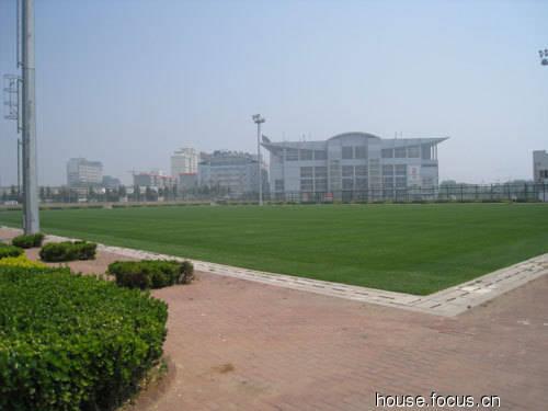 图:多角度透视秦皇岛奥体中心足球场整体结构