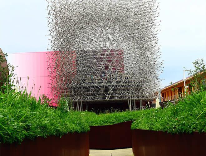 """英国馆的""""蜂巢"""",有没有点密集恐惧?"""