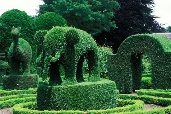 优美的园林植物造型具有很高的观赏价值,不仅可以美化城市环境,还可以为紧张忙碌的人们舒压。在公园里,您可能偶尔见过几棵修剪成球形或方形的灌木,但您见过一大片造型植物吗?现在,美国福克斯新闻网搜寻到9个风格的花园,让我们一窥究竟吧。   Pearl Fryar花园   Pearl Fryar花园位于美国南卡罗来纳州的毕晓普维尔(Bishopville)。花园主人Fryar在20世纪   罗德斯兰花园(LOTUSLAND)   1941年,波兰歌剧演唱家甘纳瓦斯卡(Ganna Walska)在加利福利亚洲圣