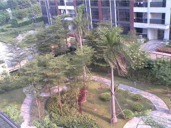 琶洲花园舒适小学,送南关小区,3+1+1商圈,带省户型涿州市天台图片