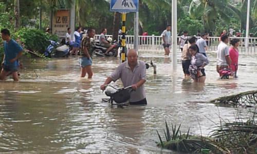 """焦点策划:史上最强台风""""海燕""""后的海南岛"""