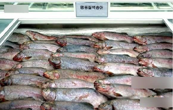 卖鱼店装修图片